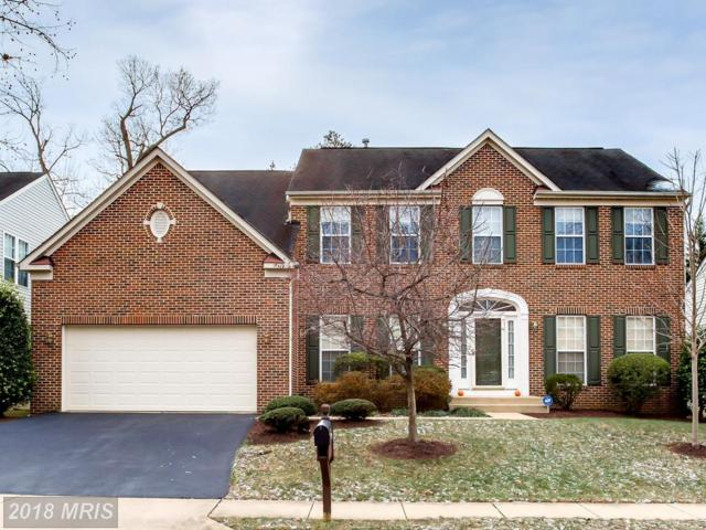 3553 Drews Court, Alexandria, VA 22309 (#FX10128046) :: Pearson Smith Realty