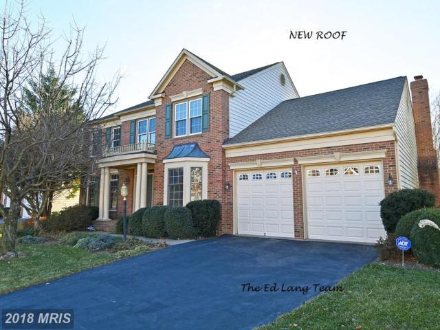 5218 Fernbrook Drive, Centreville, VA 20120 (#FX10128914) :: Pearson Smith Realty