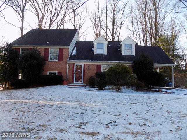 4603 Gramlee Circle, Fairfax, VA 22032 (#FX10129358) :: The Putnam Group