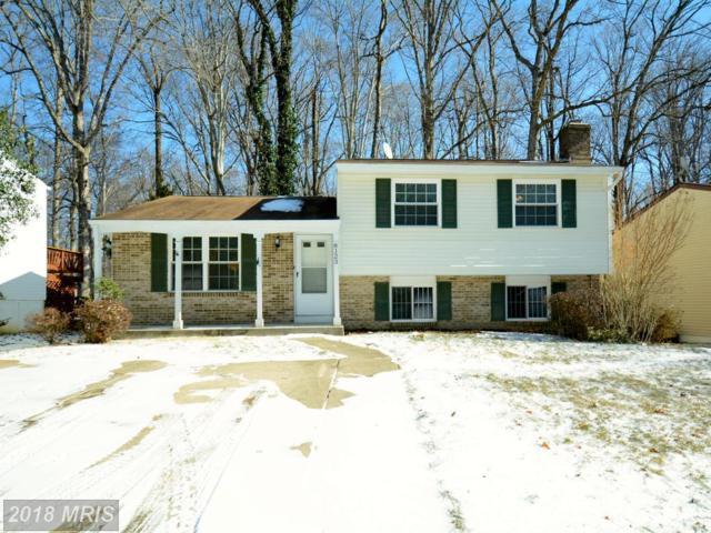 8123 Winter Blue Court, Springfield, VA 22153 (#FX10129612) :: Long & Foster