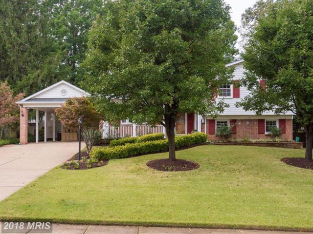 6004 Jennings Lane, Springfield, VA 22150 (#FX10130114) :: Long & Foster