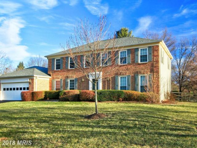 1008 Riva Ridge Drive, Great Falls, VA 22066 (#FX10130379) :: Great Falls Great Homes