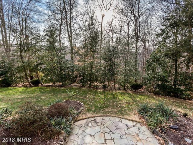 1352 Pine Tree Road, Mclean, VA 22101 (#FX10132301) :: Circadian Realty Group