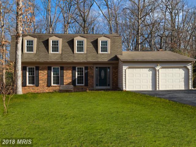 2502 Freetown Drive, Reston, VA 20191 (#FX10132826) :: Colgan Real Estate