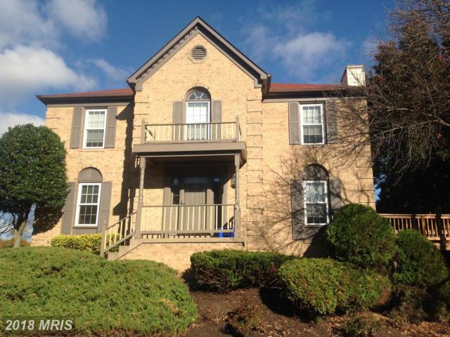 4507 Sawgrass Court, Alexandria, VA 22312 (#FX10134375) :: Colgan Real Estate