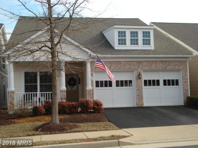 8929 Periwinkle Blue Court, Lorton, VA 22079 (#FX10135170) :: Browning Homes Group