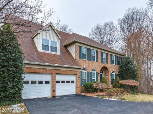 7732 White Willow Court, Springfield, VA 22153 (#FX10135316) :: Browning Homes Group