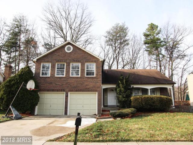 6542 Raftelis Road, Burke, VA 22015 (#FX10135734) :: Browning Homes Group