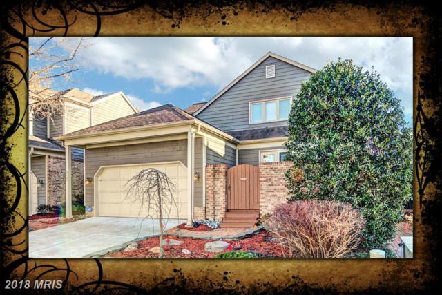 3121 Jerman Lane, Oakton, VA 22124 (#FX10136259) :: Browning Homes Group