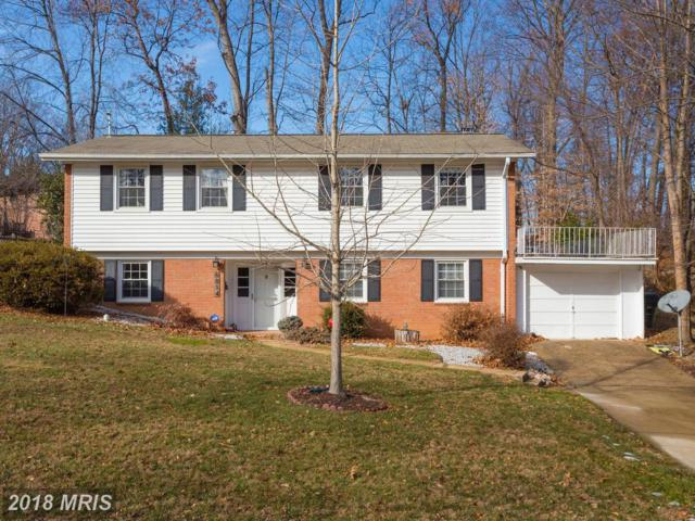 6814 Maplecrest Drive, Annandale, VA 22003 (#FX10136817) :: The Putnam Group