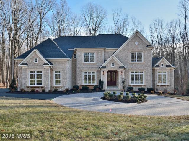 680 Springvale Road, Great Falls, VA 22066 (#FX10136916) :: Browning Homes Group
