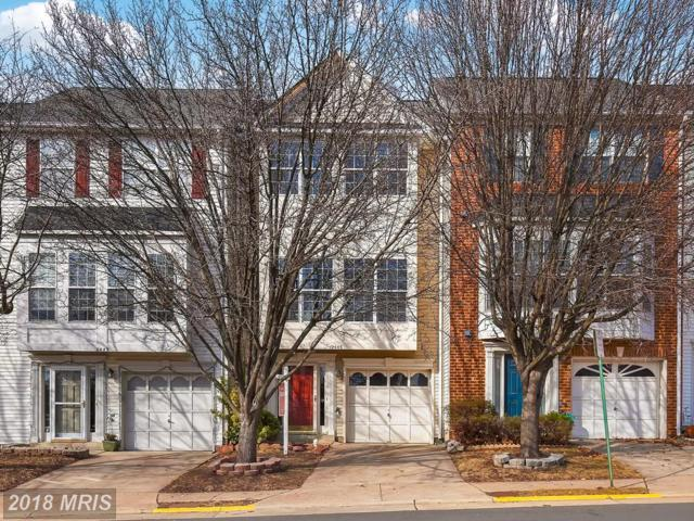 2445 Wheat Meadow Circle, Herndon, VA 20171 (#FX10137147) :: Circadian Realty Group