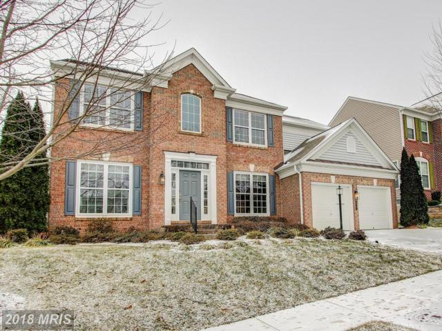 8177 Paper Birch Drive, Lorton, VA 22079 (#FX10137616) :: Browning Homes Group