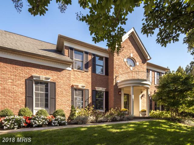 3189 Pond Mist Way, Herndon, VA 20171 (#FX10137681) :: Circadian Realty Group