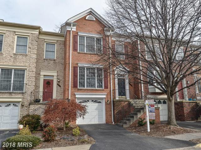5124 Woodfield Drive, Centreville, VA 20120 (#FX10137703) :: The Hagarty Real Estate Team
