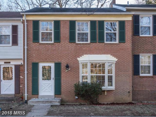 8497 Kitchener Drive, Springfield, VA 22153 (#FX10138842) :: The Putnam Group