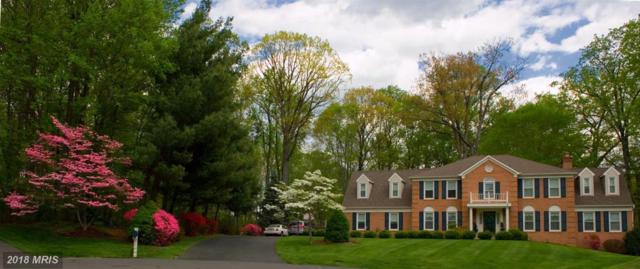 11689 Hollyview Drive, Great Falls, VA 22066 (#FX10139115) :: The Putnam Group