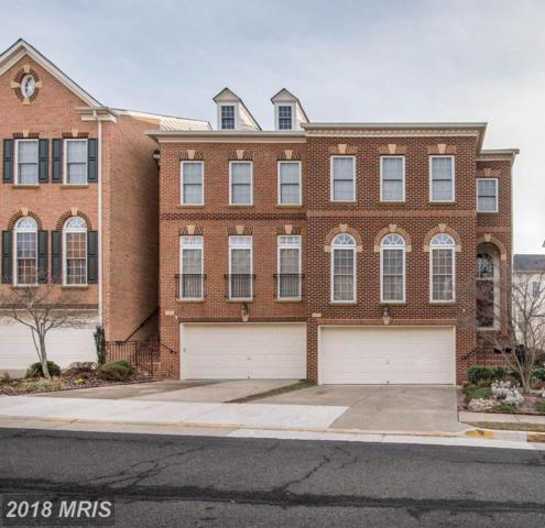7121 Point Replete Circle, Fort Belvoir, VA 22060 (#FX10140452) :: The Dailey Group