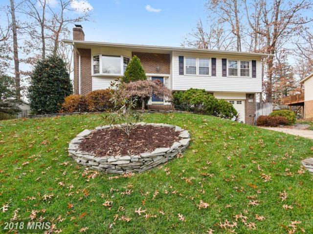 7216 Briarcliff Drive, Springfield, VA 22153 (#FX10142390) :: The Gus Anthony Team