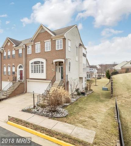 5240 Cozy Glen Lane, Alexandria, VA 22312 (#FX10144845) :: The Greg Wells Team