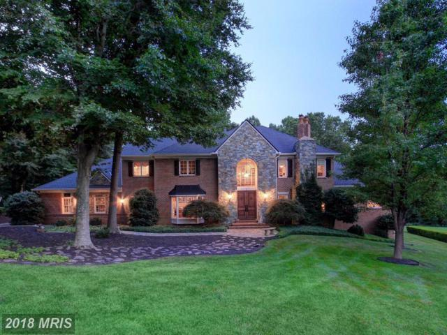 10859 Patowmack Drive, Great Falls, VA 22066 (#FX10145872) :: Great Falls Great Homes