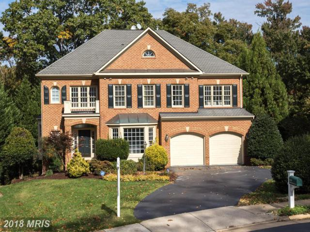 1559 Dominion Hill Court, Mclean, VA 22101 (#FX10147812) :: The Belt Team