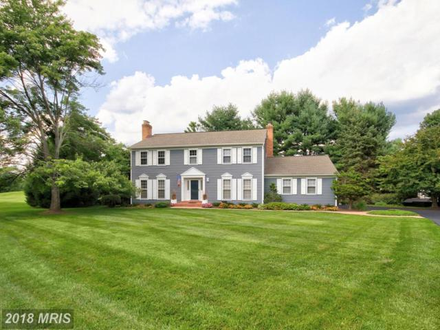 9200 Vernon Drive, Great Falls, VA 22066 (#FX10152667) :: Great Falls Great Homes