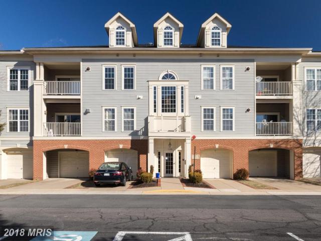 11306 Westbrook Mill Lane #301, Fairfax, VA 22030 (#FX10153502) :: AJ Team Realty