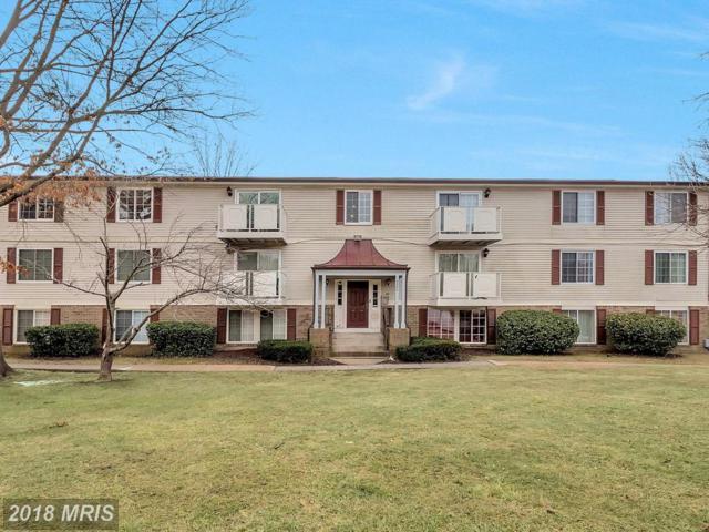 8385 Brockham Drive J, Alexandria, VA 22309 (#FX10154671) :: SURE Sales Group