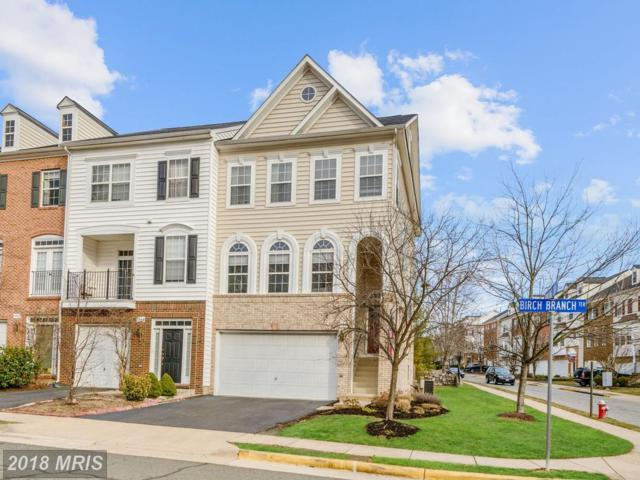 7871 Birch Branch Terrace, Alexandria, VA 22315 (#FX10155800) :: The Gus Anthony Team