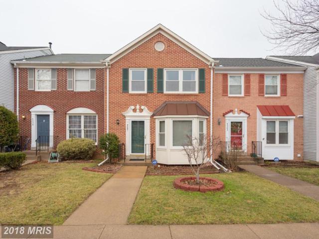 8061 Sky Blue Drive, Alexandria, VA 22315 (#FX10157706) :: Labrador Real Estate Team