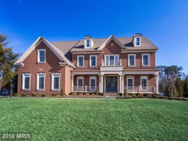 11623 Verna Drive, Oakton, VA 22124 (#FX10157818) :: Great Falls Great Homes