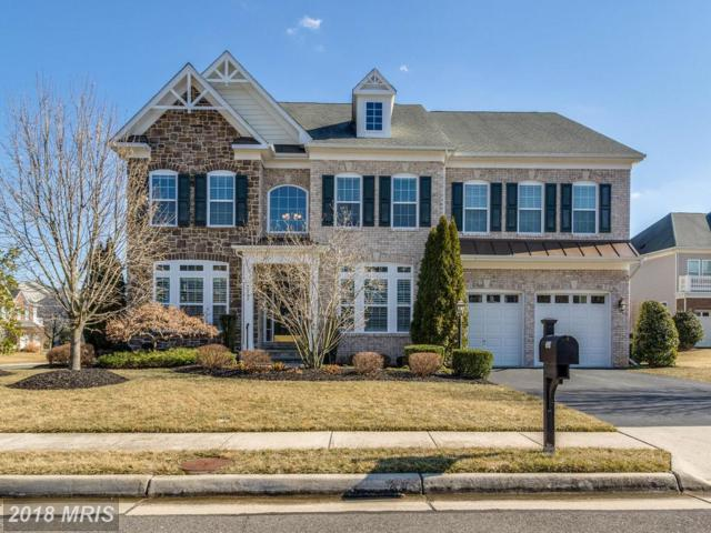 7539 Red Hill Drive, Springfield, VA 22153 (#FX10157959) :: Long & Foster