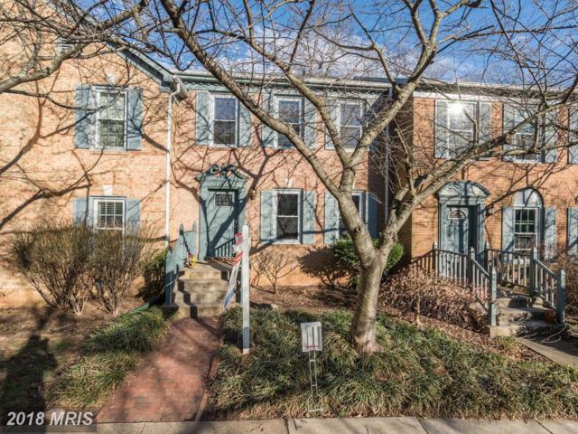 12486 Sweet Leaf Terrace, Fairfax, VA 22033 (#FX10158580) :: SURE Sales Group