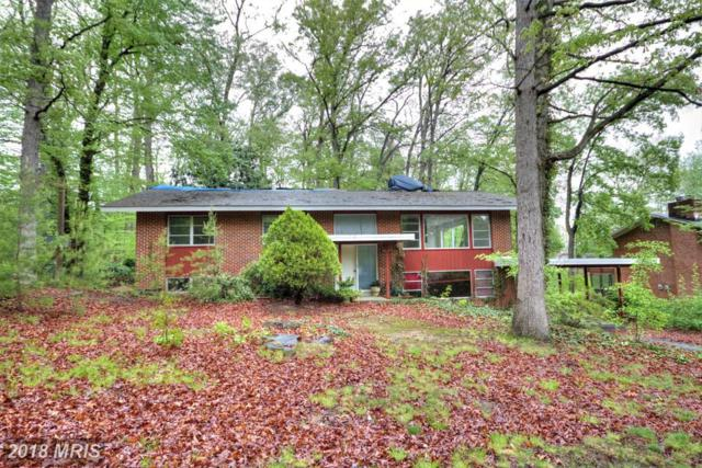 6612 Billings Drive, Annandale, VA 22003 (#FX10159902) :: The Gus Anthony Team