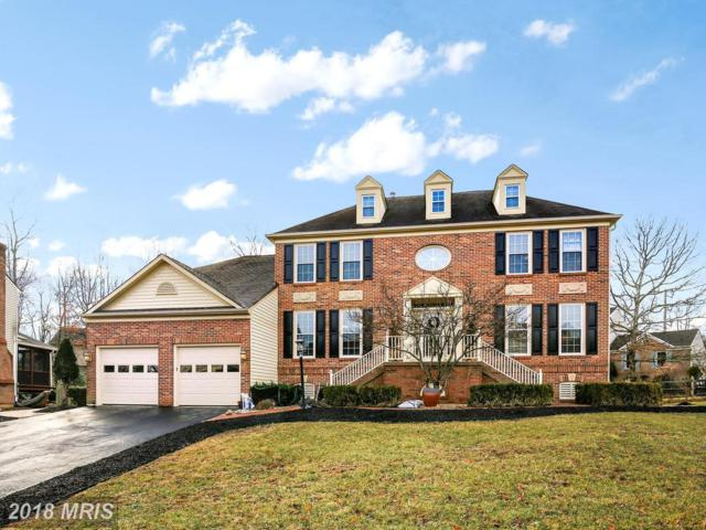15405 Whitechapel Court, Centreville, VA 20120 (#FX10160193) :: Provident Real Estate