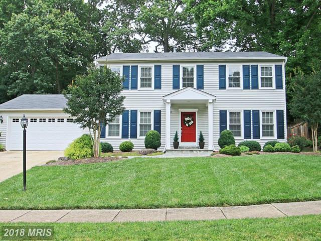9628 Podium Drive, Vienna, VA 22182 (#FX10161982) :: Network Realty Group