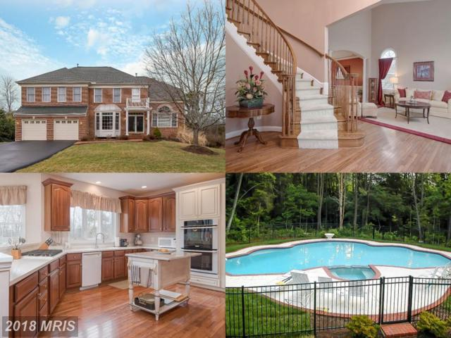 1065 Methven Court, Herndon, VA 20170 (#FX10162175) :: Provident Real Estate