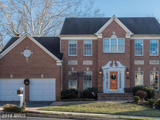 13771 Laurel Rock Drive, Clifton, VA 20124 (#FX10162573) :: Wilson Realty Group