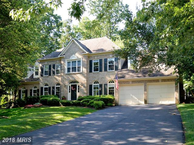 1130 Round Pebble Lane, Reston, VA 20194 (#FX10162590) :: The Belt Team