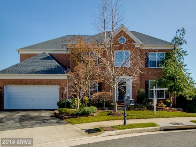 8100 Bluebonnet Drive, Lorton, VA 22079 (#FX10163120) :: Wilson Realty Group