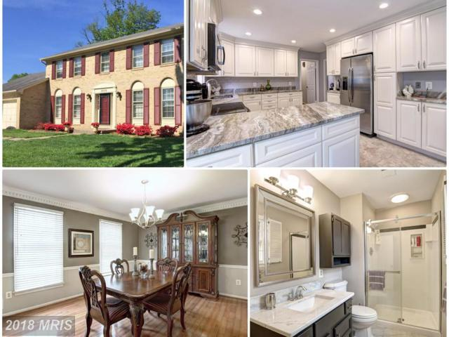 4606 Demby Drive, Fairfax, VA 22032 (#FX10163180) :: Network Realty Group