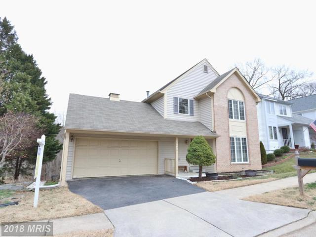 8628 Lauren Drive, Springfield, VA 22153 (#FX10163319) :: Pearson Smith Realty