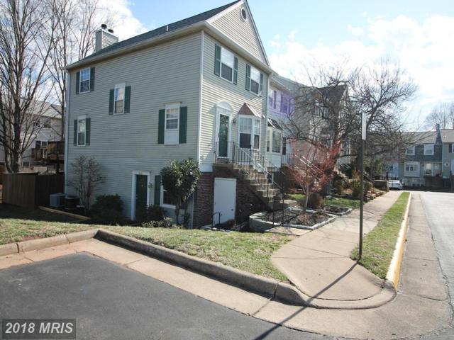4113 Pleasant Meadow Court 89C, Chantilly, VA 20151 (#FX10163352) :: The Greg Wells Team