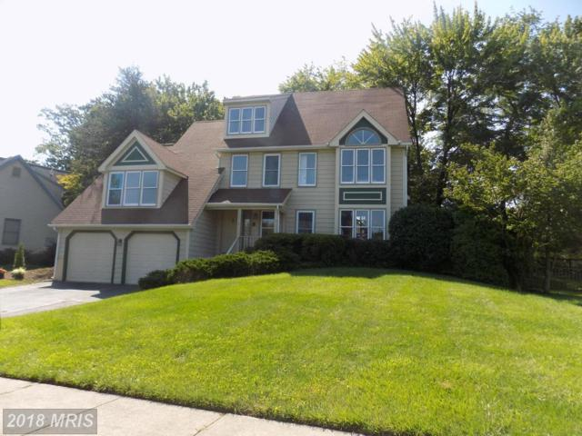 13715 Frankford Circle, Centreville, VA 20120 (#FX10164736) :: The Gus Anthony Team