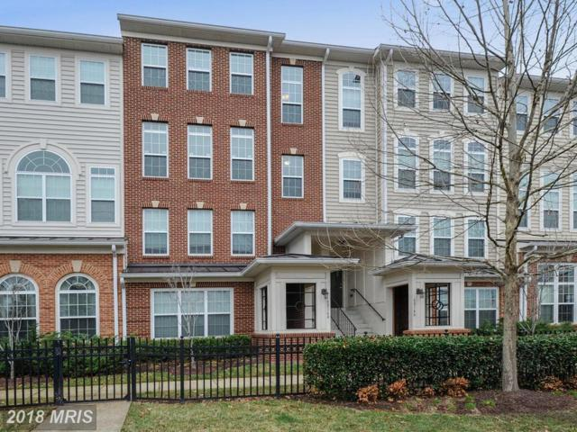 6016-B Machen Road #174, Centreville, VA 20121 (#FX10169670) :: Dart Homes