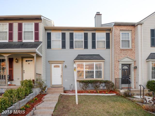 14534 Castleford Court, Centreville, VA 20121 (#FX10170221) :: SURE Sales Group