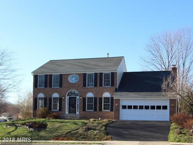 13808 South Springs Drive, Clifton, VA 20124 (#FX10170911) :: Long & Foster
