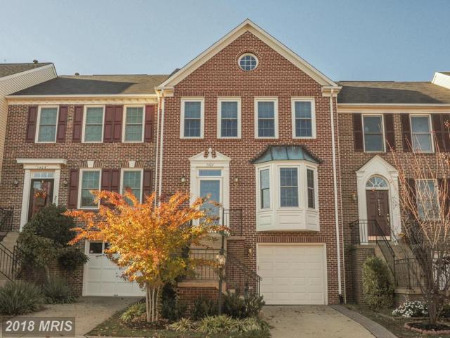 7404 Heatherfield Lane, Alexandria, VA 22315 (#FX10174746) :: SURE Sales Group