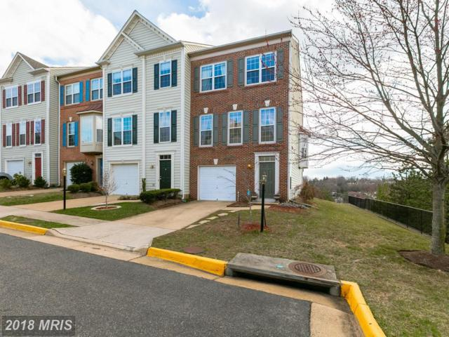 6357 Burgundy Leaf Lane, Alexandria, VA 22312 (#FX10176813) :: The Greg Wells Team